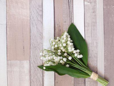 ดอกลิลลี่ ออฟ เดอะ วัลเลย์ กลิ่นแห่งความสุข