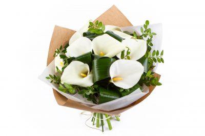 ดอกคาลล่า ลิลลี่ ดอกไม้ของเจ้าสาว